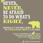 """Never, never, be afraid to do what's right, especially if the well-b..."