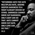Hate cannot drive out hate, only love can do that.